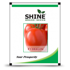 Hybrid Tomato Seeds - F1 Dragon (10GM) (DRAGON01)