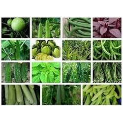 Nursery Vegetable Seeds (120)