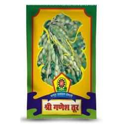 Shree Ganesh Tur Seeds - Pigeon Pea /Red Gram / Arhar