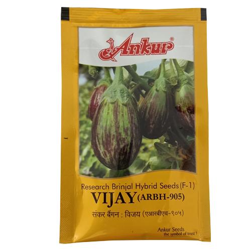 Ankur Hybrid Brinjal Vijay ARBH-905 - 10 Gram