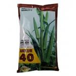 Ankur Bhindi -40 Seeds 500 gram