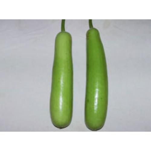 Ankur Hybrid Bottle gourd- Amit (10g) Vegetable Seeds