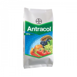 Bayer Antracol fungicide with broad spectrum 250g