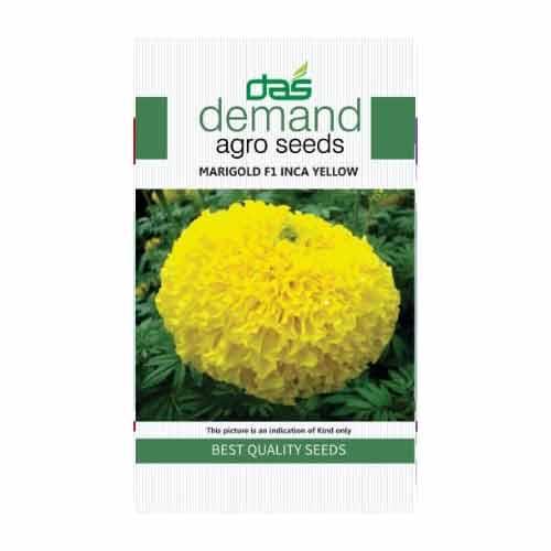 DAS agro seeds ( Marigold F1 INCA yellow ) 20 Seeds