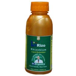 Liv Rizo - Rhizobium Bacteria