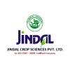 ANAND JINDAL