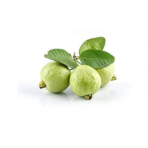 Sweet Guava - Amrut Fresh Fruit directly from farm