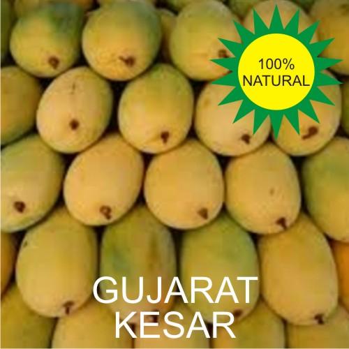 Gujarat Kesar Mango - Kesar Aam - 6 Nos