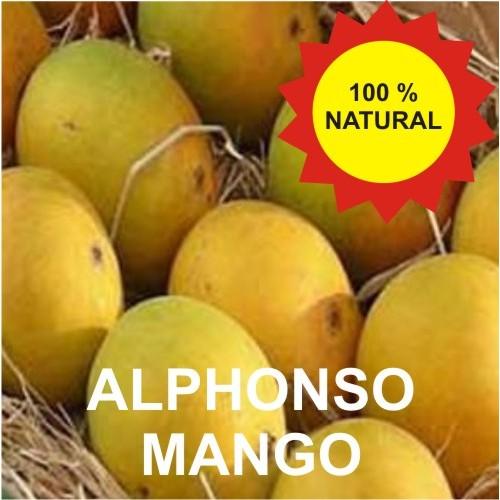 Devgad Alphonso Mango - Hapus - 1 Dozen