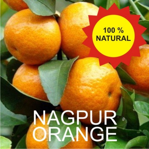 Nagpur Orange - Santra - 3 Kg