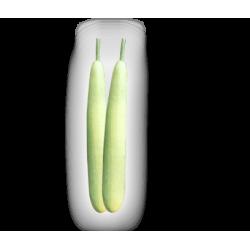 Bottle Gourd Seeds (15)