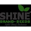 Shine Brand Seed