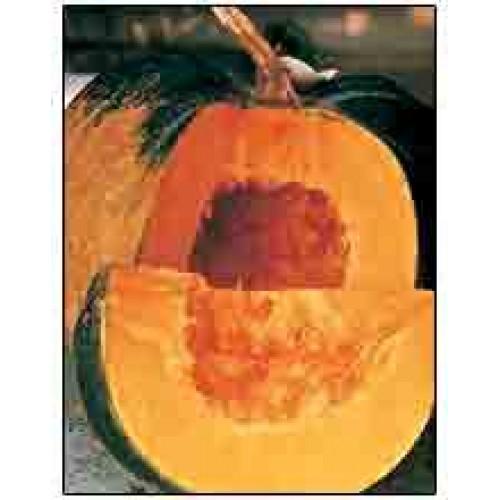 VNR Pumpkin Kanchan Vegetable Seeds- 50 GRM