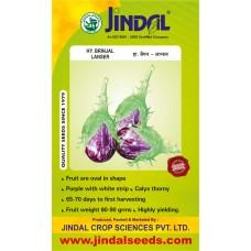 Jindal Brinjal Hybrid Seeds(baingan Seeds)-Lanser-10GM